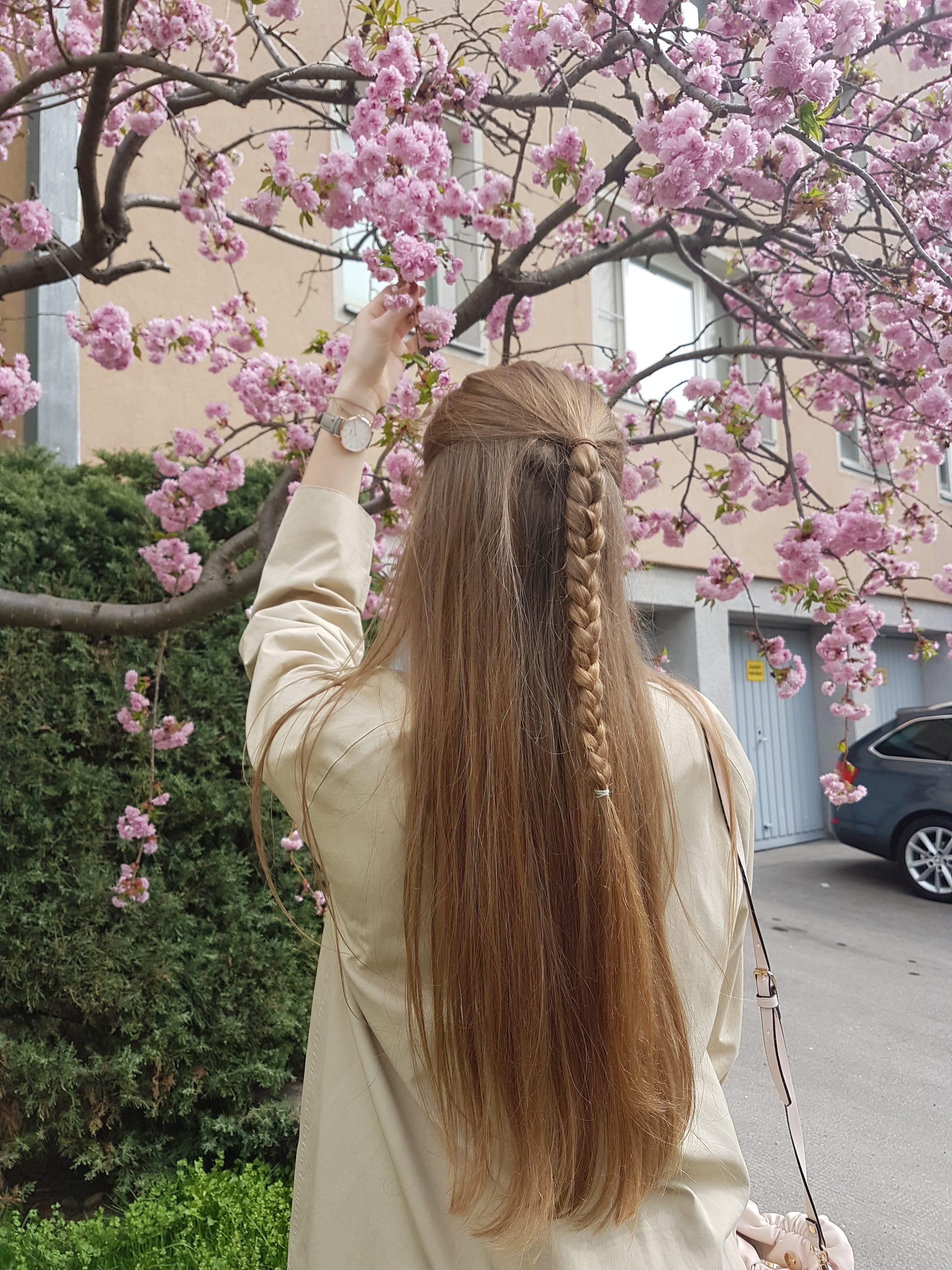spring in vienna